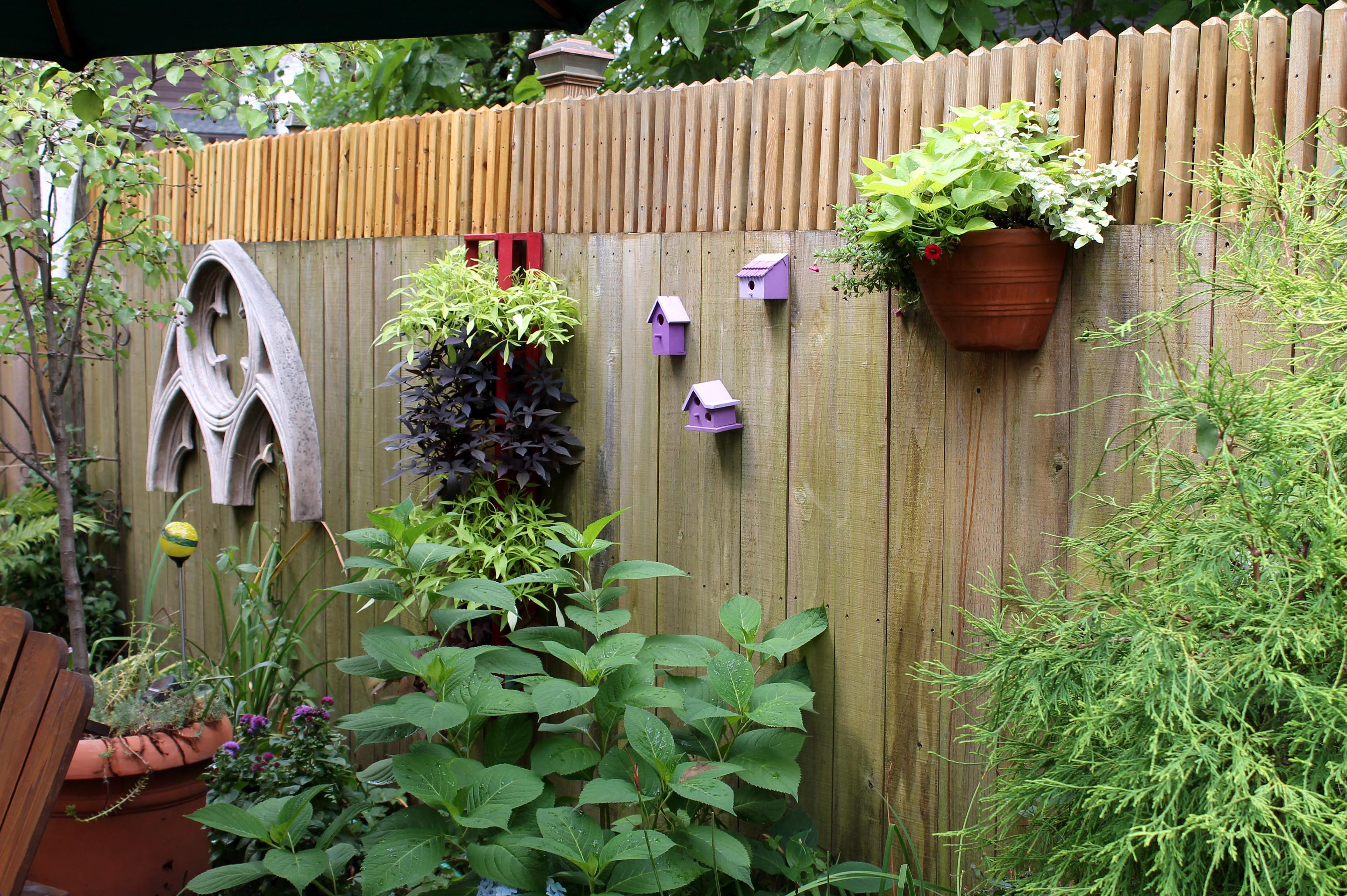 Ealing Backyard Fence Decor For Your Decoration Ideas Decorative Regarding Sizing 3088 X 2056