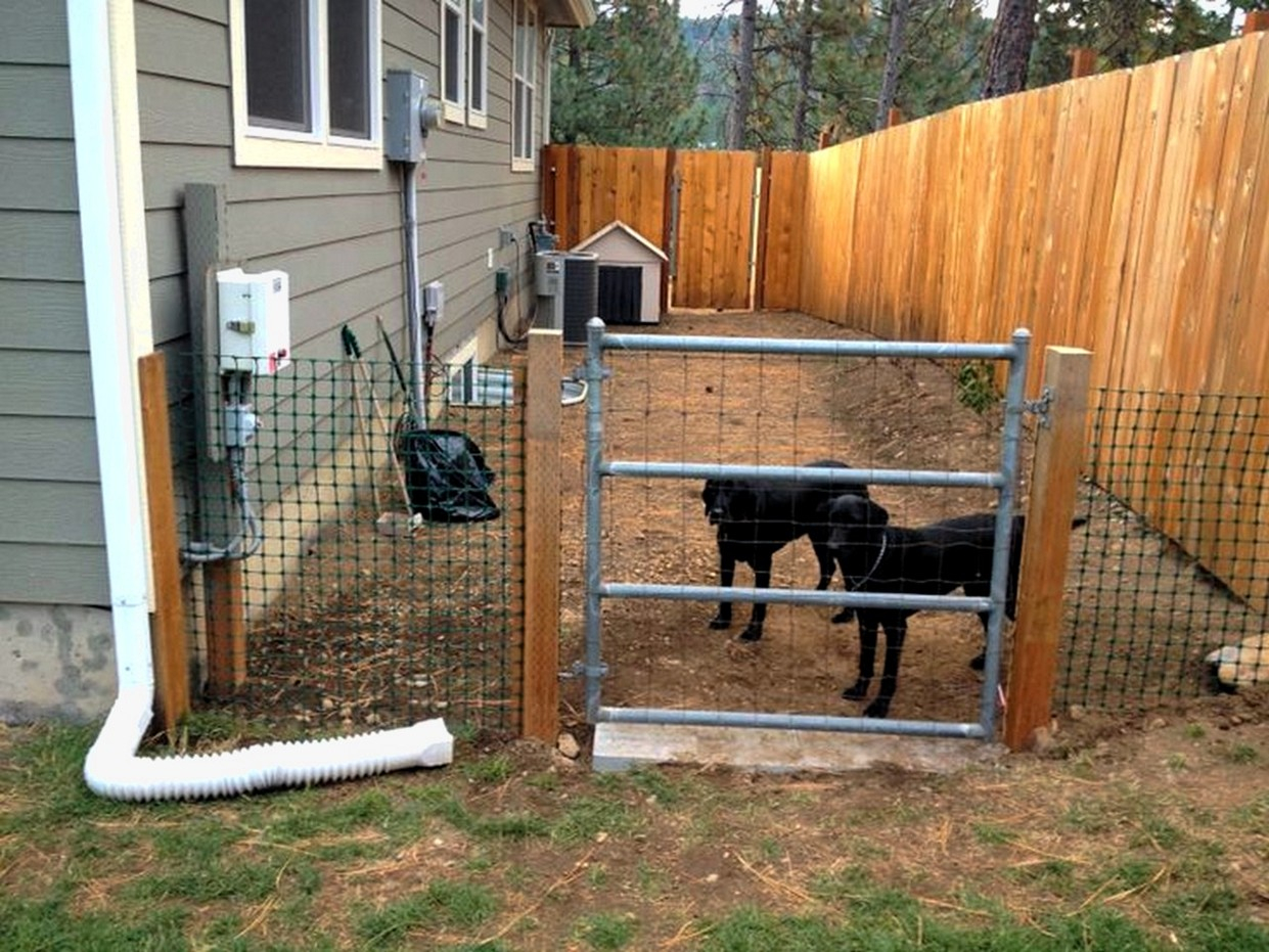 Backyard Fences For Dogs Fence Ideas Site