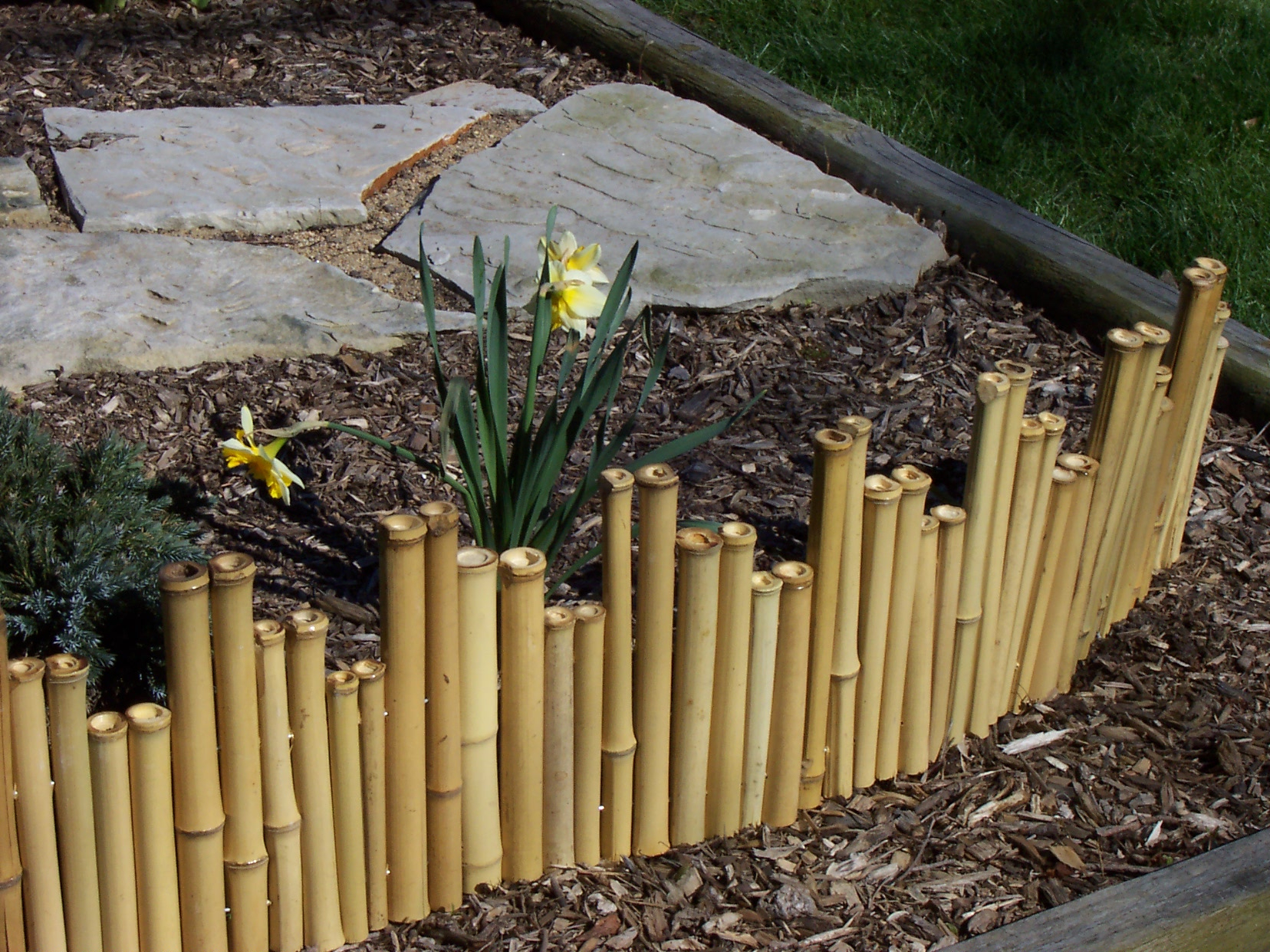 Bamboo Fencing Rolls B And M Fences Ideas with sizing 1656 X 1242