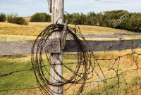 Barbwire Hanging On An Old Fence Post Old Farm In Saskatchewan for dimensions 866 X 1390