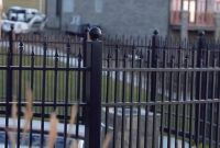 Black Vinyl Fencing Dd Vinyl Fabricators Houston with size 2498 X 631
