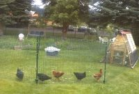 Chicken Coop Fencing in size 1280 X 720