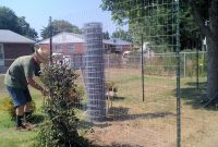 Chicken Run Fence Ideas Fences Design pertaining to proportions 1600 X 1200
