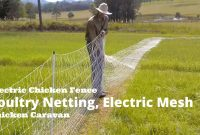 Electric Chicken Fence Poultry Netting Electric Mesh Chicken regarding sizing 1280 X 720