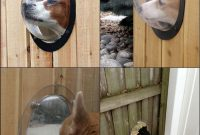 Every Dog Should Have A Point Of View Httptheownerbuildernetwork with measurements 800 X 1125