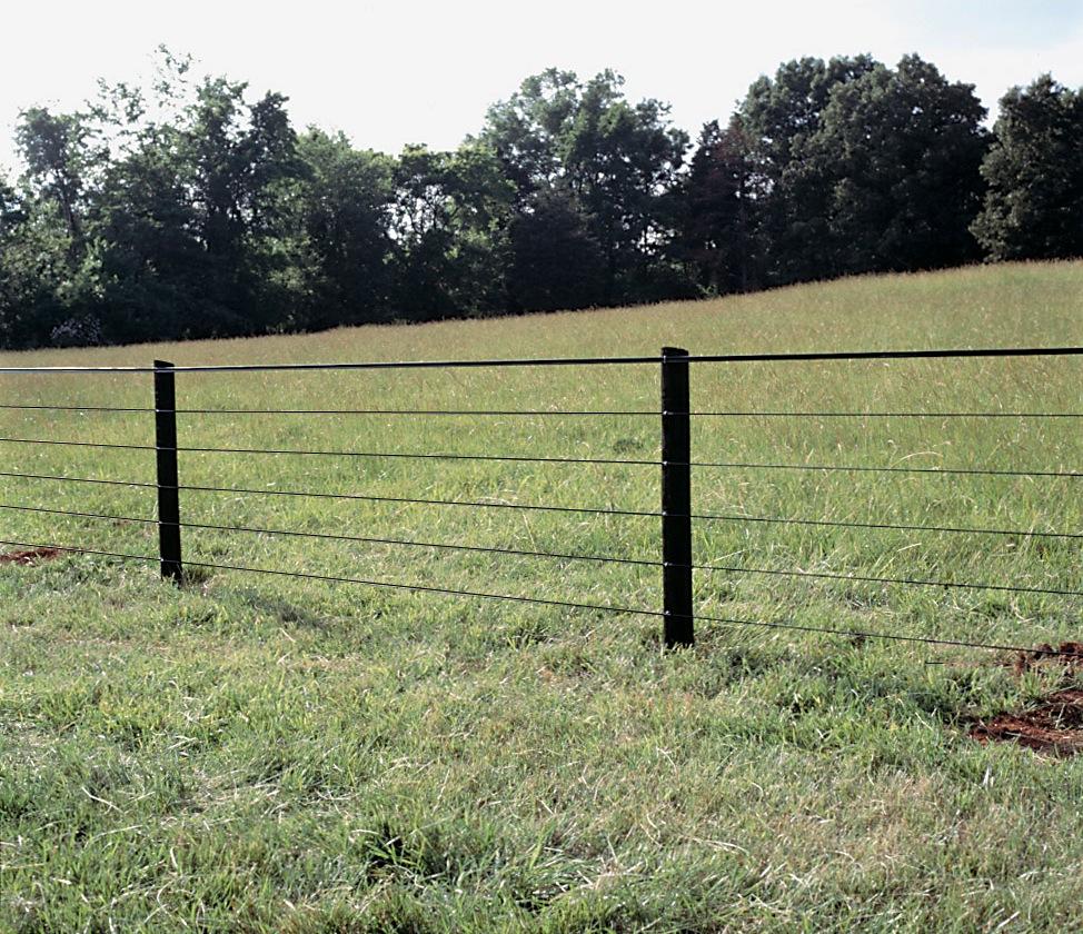 Horsefence Direct Centaur Polyplus Htp Fence regarding size 974 X 840