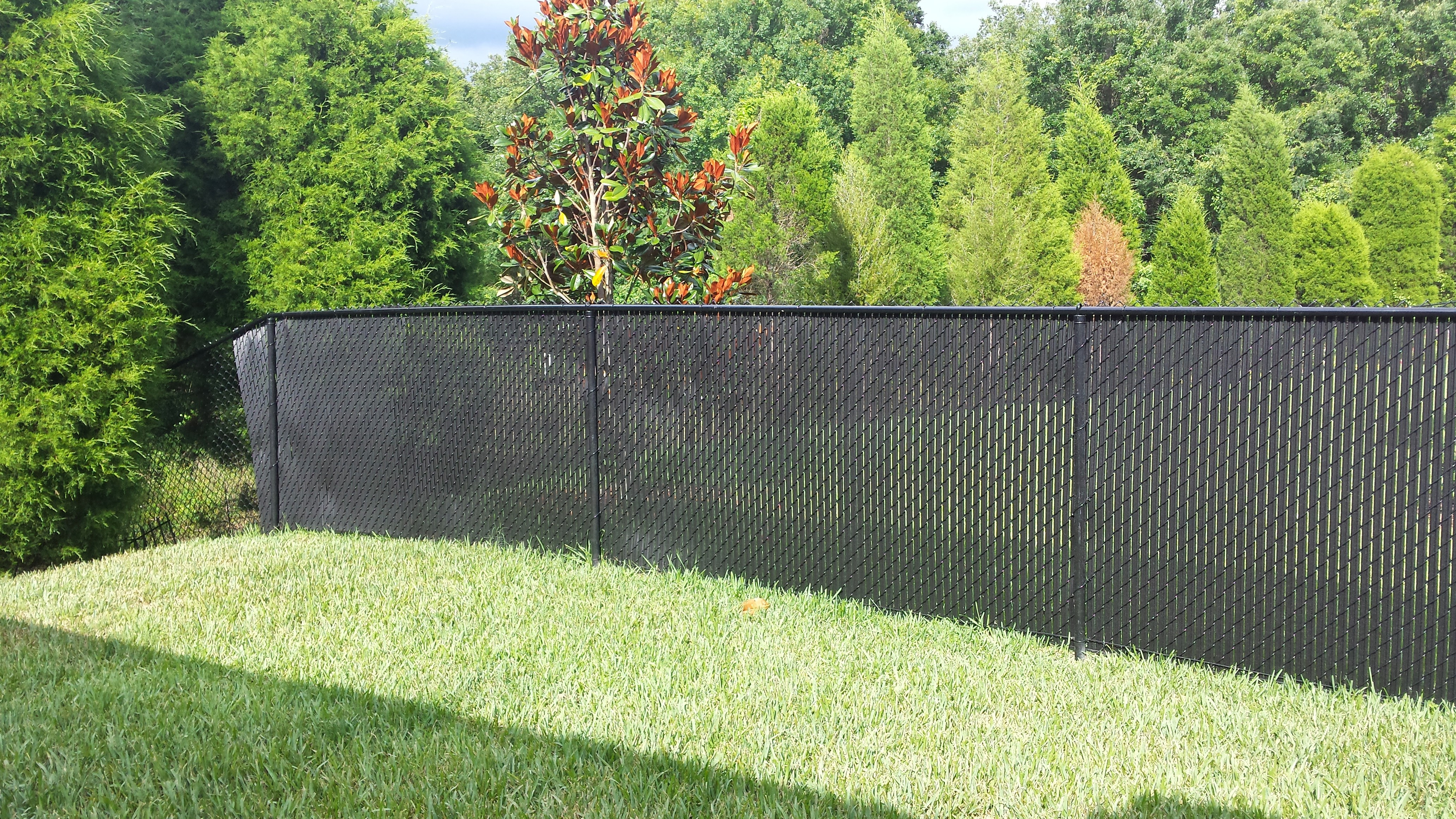 Privacy Fence Slats Great Solution For Your Chain Link Fence Tw throughout size 4128 X 2322