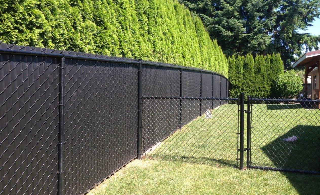 Privacy Slats For Chain Link Fence Rona Fence Ideas Site