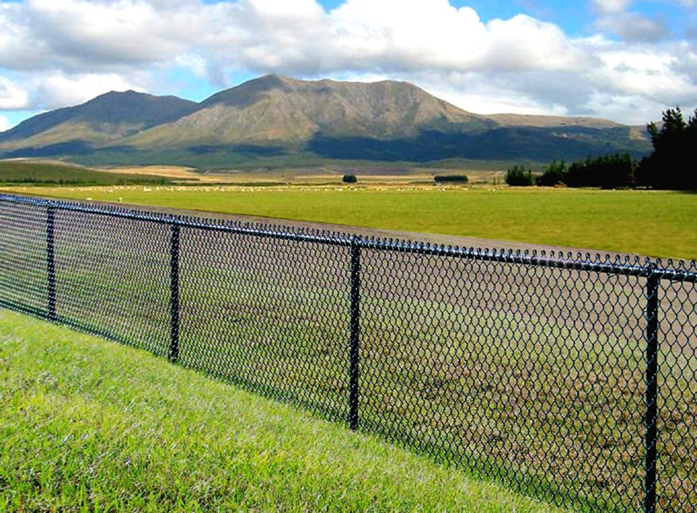 Singleton Fence Chain Link inside proportions 1391 X 1024