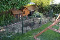 Sunny Simple Life The New Chicken Fence in size 1600 X 1066