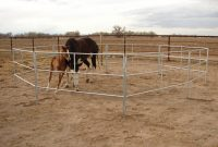 Travel N Corrals Horse Corrals Go With Your Trailer regarding proportions 2592 X 1944