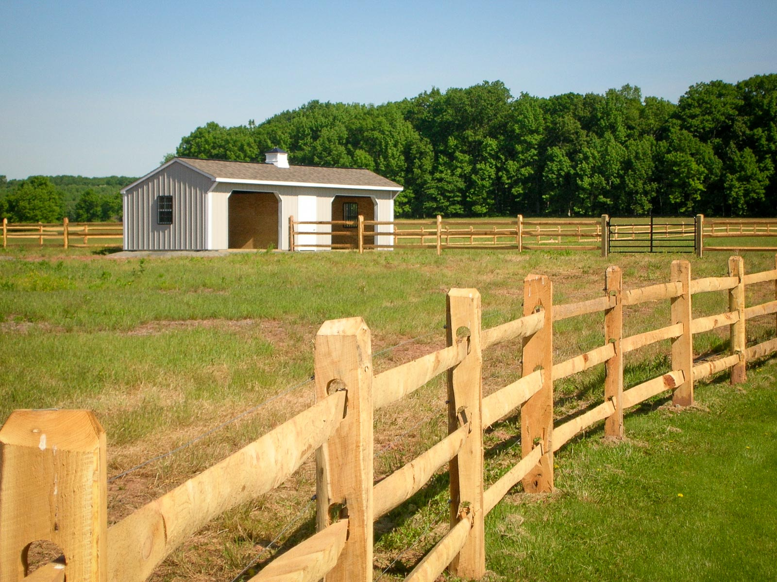 Wood Horse Fencing Cole Papers Design Building A Wooden Horse within size 1600 X 1200