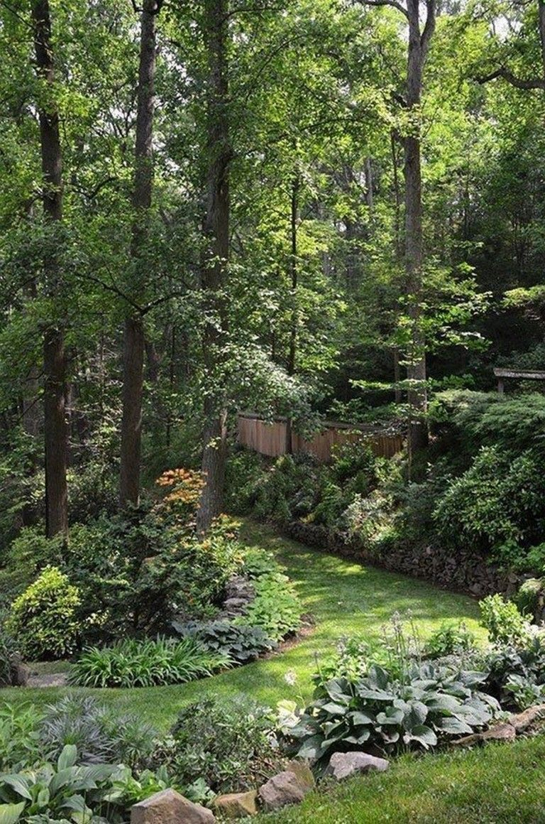 30 Inspirations Love The Blending Of Garden Into Forest with regard to measurements 768 X 1160