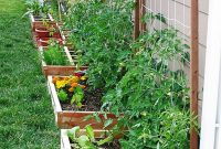 62 Affordable Backyard Vegetable Garden Designs Ideas with dimensions 900 X 1199