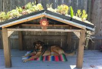 Awesome Succulent Roof Dog House My Mom Made For Her Pup in size 2592 X 1936