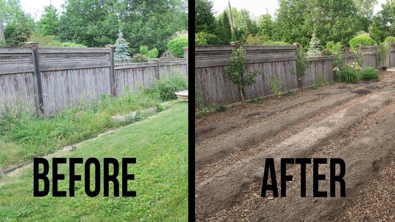 Backyard Edible Garden Transformation for dimensions 1280 X 720