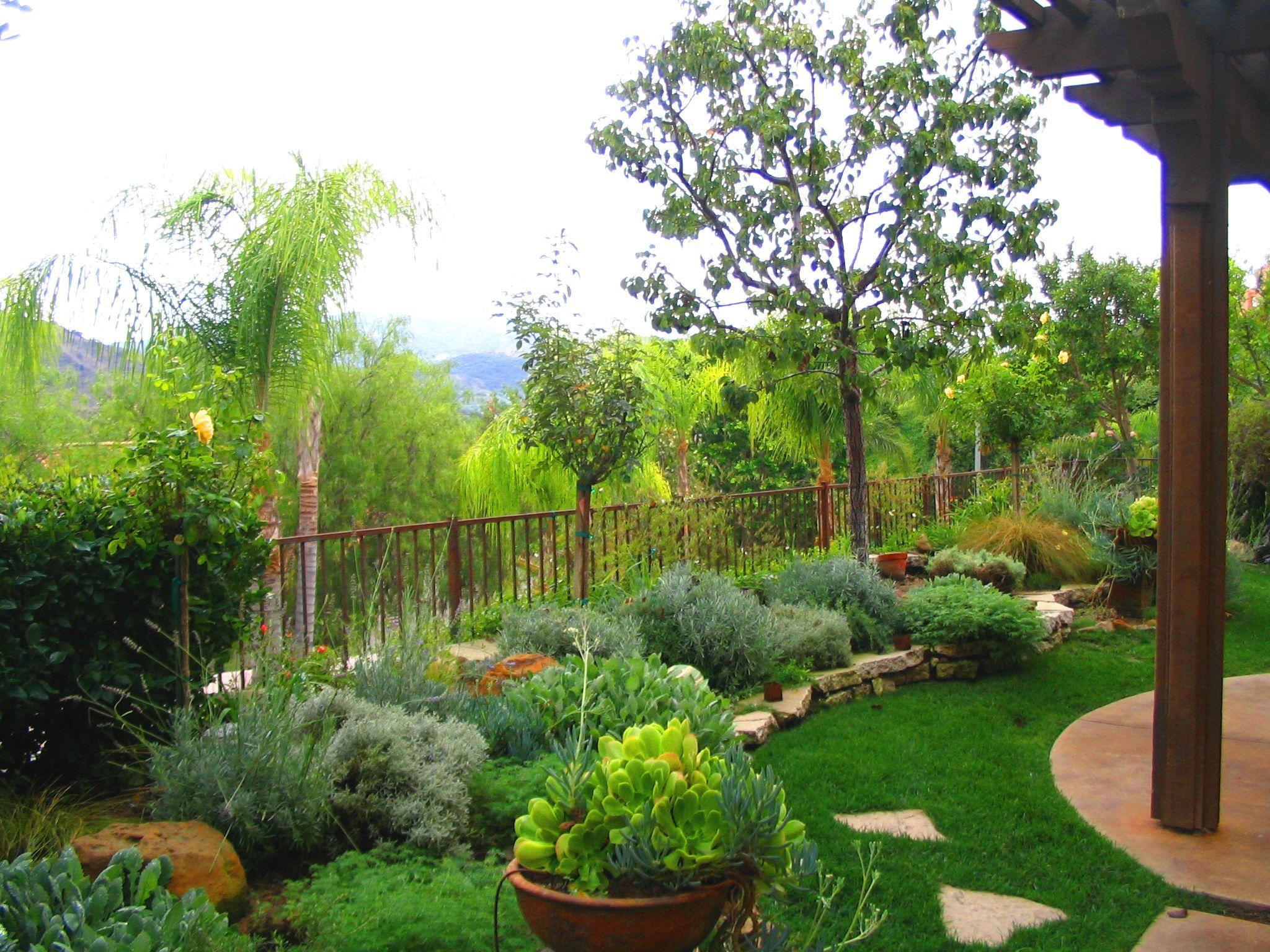 Backyard Garden Design Garden Book Shirley Bovshow Garden regarding sizing 2048 X 1536