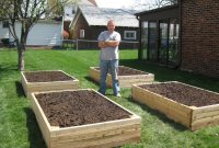 Bp Builds Four Raised Garden Beds Vegetable Garden throughout dimensions 2048 X 1536