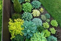 Outdoor Backyard Garden With Hosta Plants Best Time To intended for measurements 1024 X 1370