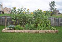 Vegetable Gardening Tips For Beginners inside size 1024 X 768