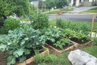Why You Should Plant A Front Yard Veggie Garden with regard to proportions 2048 X 1536